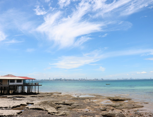 A Traveller's Guide to Pattaya