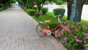 Dawn Jorgensen. Day Trip to Ayutthaya. Summer Palace Walkway