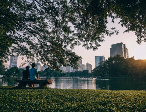 Bangkok's Charming Green Spaces
