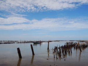 Samut Sakhon Salt Pan