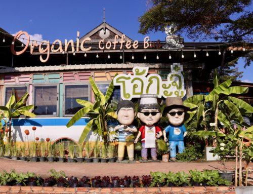The Ohkajhu Farm to Table Organic Cafe