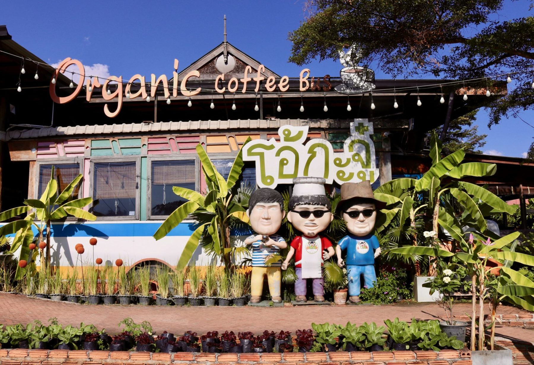 Amazing Thailand SA Blog. Table Organic Cafe. Dawn.9