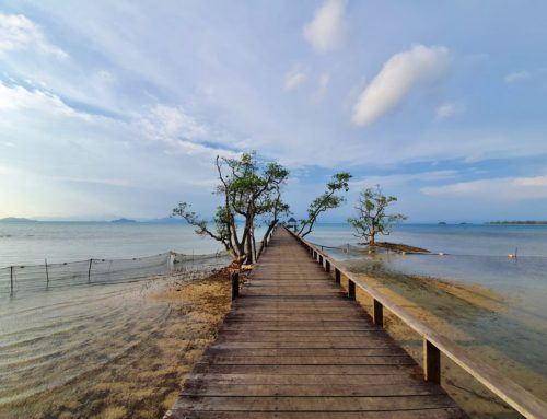 Trat's Koh Mak. An ideal destination for eco-conscious travellers.